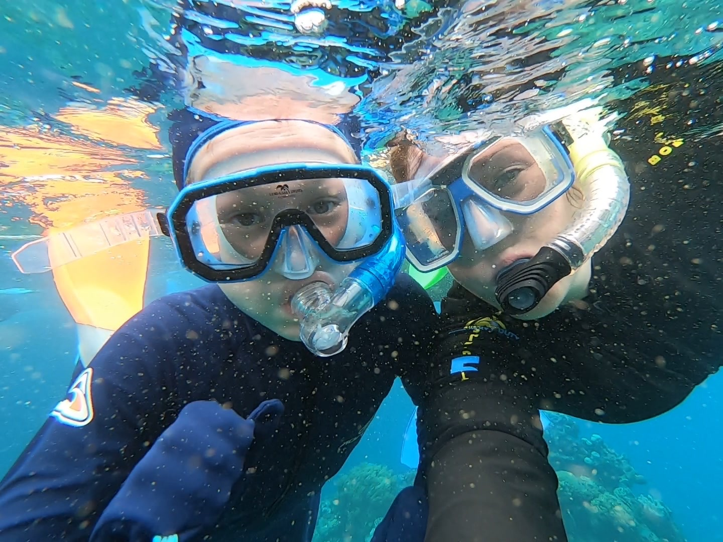 Exploring Marine Life For Kids on the thing i do show