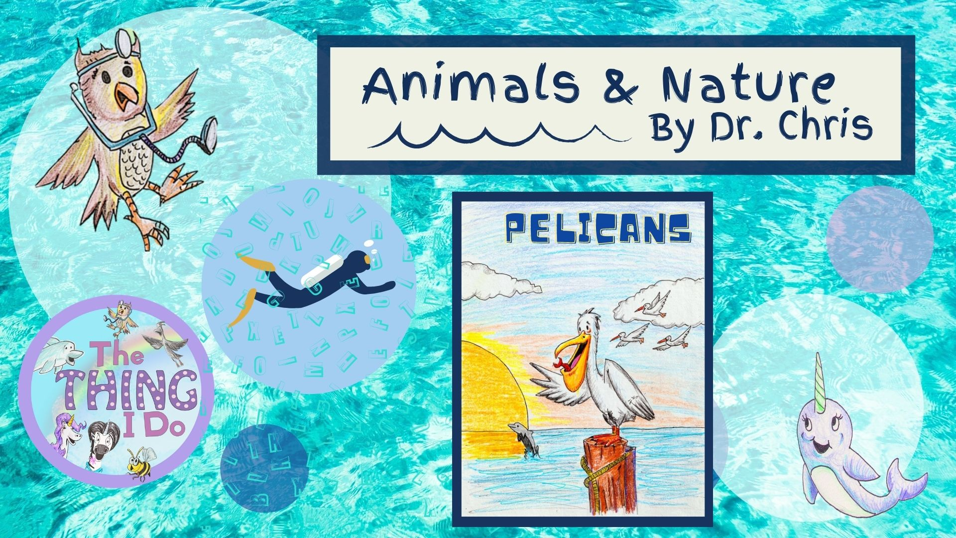 dr. chris herzig pelicans animals and nature series