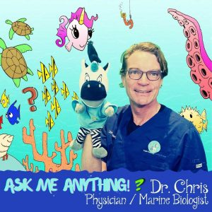 Learn About Ocean Animals